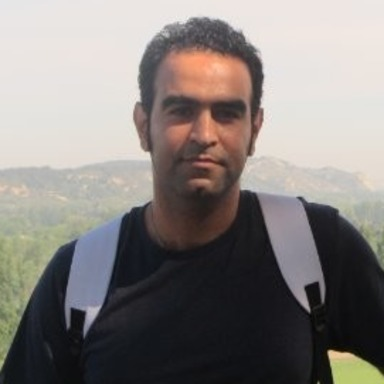 Shervin Karimkashi Arani